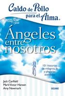 ANGELES ENTRE NOSOTROS - CALDO DE POLLO